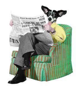 mabel-in-chair.jpg